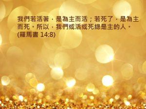 45_14_8_28
